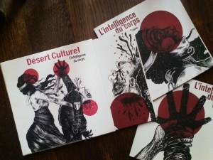 Discographie Desert Culturel